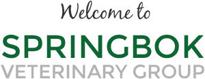 Welcome to Springbok Veterinary Group